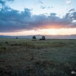 Tanzania_Safari-10