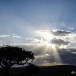 Tanzania_Safari-53